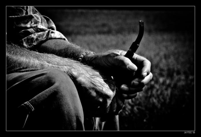 shepherd_June14_jaytee59_15