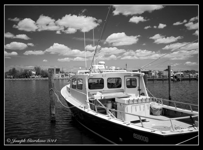 Fishing-BW