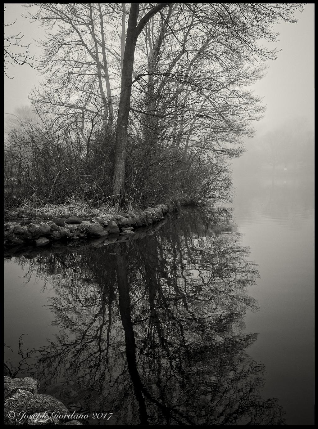 reflect-belmont